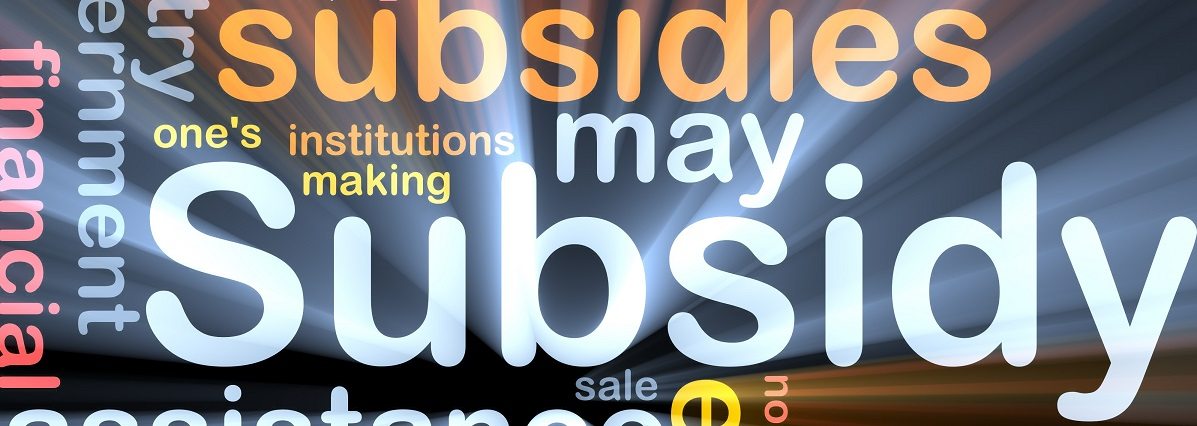 Background concept wordcloud illustration of subsidy glowing light